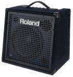 Roland KC-500 H?lle
